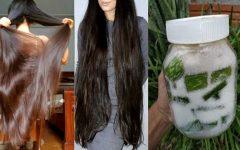Receitas de desmaia cabelo caseiro: veja como fazer