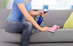 Mistura para limpar sofá a seco: limpa, desinfeta e neutraliza odores