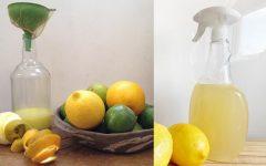 Vinagre cítrico para limpeza doméstica: casa limpa e perfumada