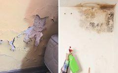 Como se Livrar da Umidade – Parede, Piso, Teto e Banheiro