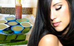 Como fazer shampoo sólido de babosa para todos os tipos de cabelo