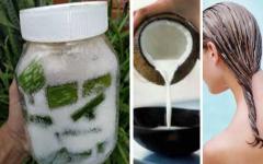 Queda de cabelo – Receita caseira de babosa e leite de coco