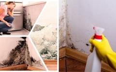 Receita Caseira para acabar com a umidade em casa