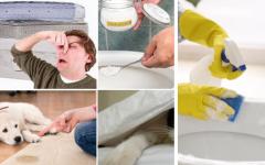 Tirar Cheiro De Xixi Do Sofá, Colchão e Banheiro Receita Caseira