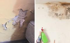 Truque Fácil, Barato e Eficaz para Eliminar umidades da casa